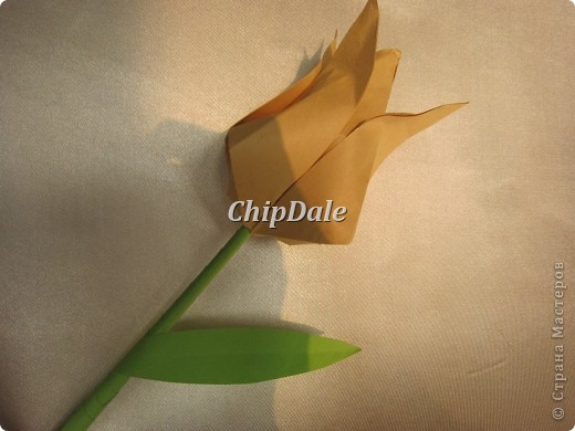 Здравствуйте, дорогие мастера и мастерицы! Первый раз в жизни делала оригами. Получились 6 тюльпанчиков - 5 в подарок к 8 марту соседям, а 6 - мне, на память. :) фото 4