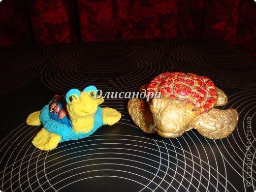 Я коллекционирую черепашек и пытаюсь делать их своими руками из различных материалов...  фото 7