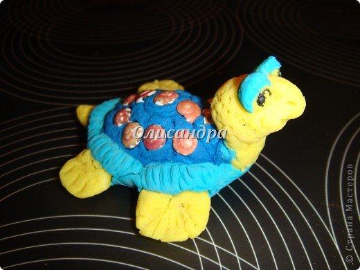 Я коллекционирую черепашек и пытаюсь делать их своими руками из различных материалов...  фото 4