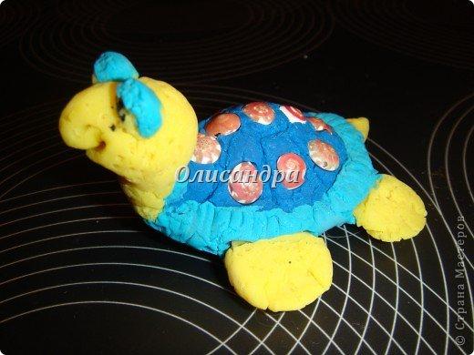 Я коллекционирую черепашек и пытаюсь делать их своими руками из различных материалов...  фото 5