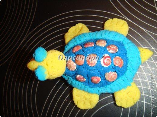 Я коллекционирую черепашек и пытаюсь делать их своими руками из различных материалов...  фото 6