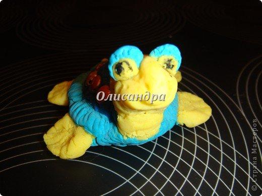 Я коллекционирую черепашек и пытаюсь делать их своими руками из различных материалов...  фото 8