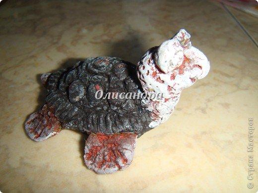 Я коллекционирую черепашек и пытаюсь делать их своими руками из различных материалов...  фото 12