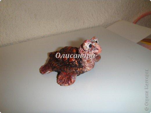 Я коллекционирую черепашек и пытаюсь делать их своими руками из различных материалов...  фото 13