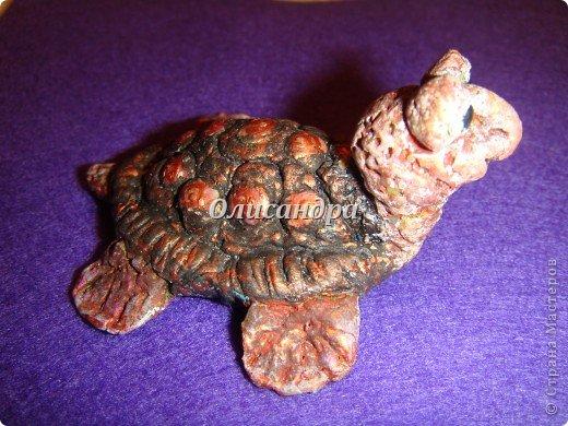 Я коллекционирую черепашек и пытаюсь делать их своими руками из различных материалов...  фото 14