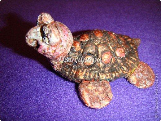 Я коллекционирую черепашек и пытаюсь делать их своими руками из различных материалов...  фото 15
