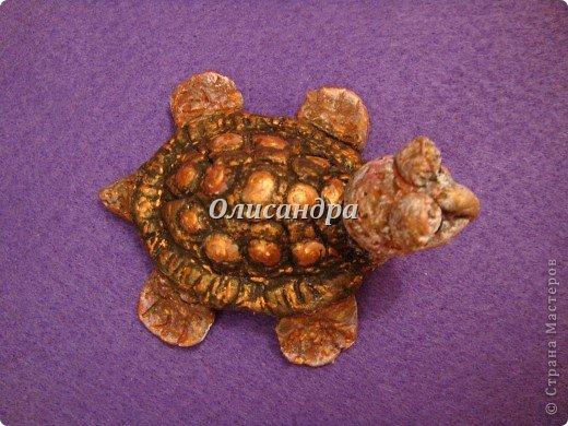 Я коллекционирую черепашек и пытаюсь делать их своими руками из различных материалов...  фото 16
