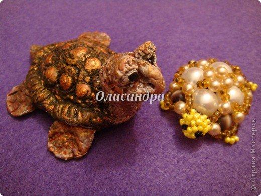 Я коллекционирую черепашек и пытаюсь делать их своими руками из различных материалов...  фото 23