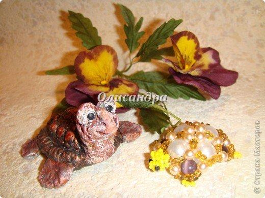 Я коллекционирую черепашек и пытаюсь делать их своими руками из различных материалов...  фото 1