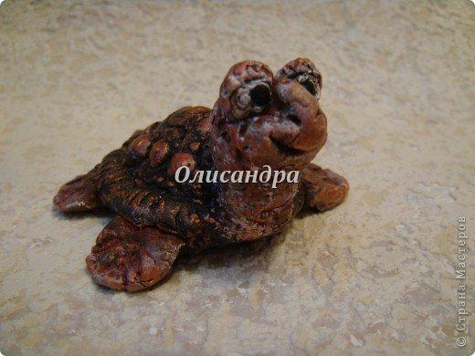 Я коллекционирую черепашек и пытаюсь делать их своими руками из различных материалов...  фото 2
