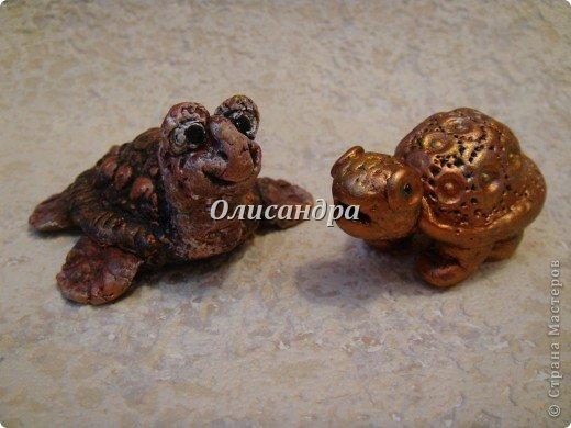 Я коллекционирую черепашек и пытаюсь делать их своими руками из различных материалов...  фото 17