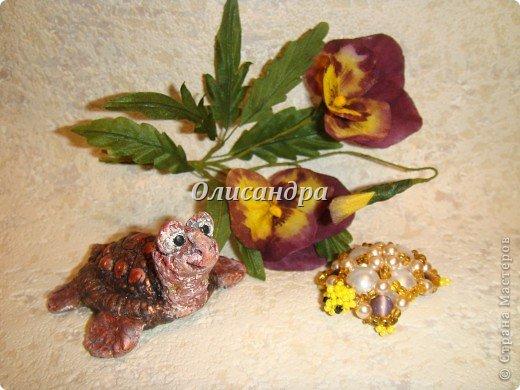 Я коллекционирую черепашек и пытаюсь делать их своими руками из различных материалов...  фото 24