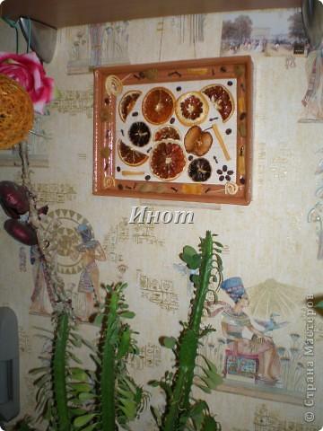 Для создания этого панно были высушены цитрусовые (апельсин, лимон и грейпфрут), кусочек яблока и покрыты акриловым лаком. Также использовала для украшения зерна кофе, гвоздику, абрикосовые косточки и сушеные шкурки лимона и апельсина. фото 3