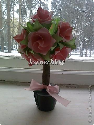 Деревья из роз фото 1