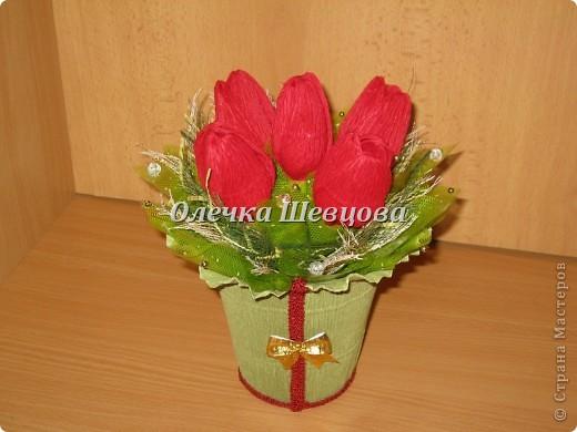 Тюльпанчики, розы, крокусы: фото 4