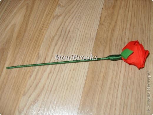 На день рождение мамы мне хотелось придумать что-нибудь оригинальное. Моя мама очень любит розы, поэтому я и решилась сделать корзинку роз. Вот и получились у меня за три дня 39 алых роз. фото 4