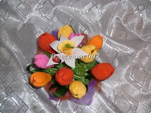 Тюльпаны с нарцисами фото 3