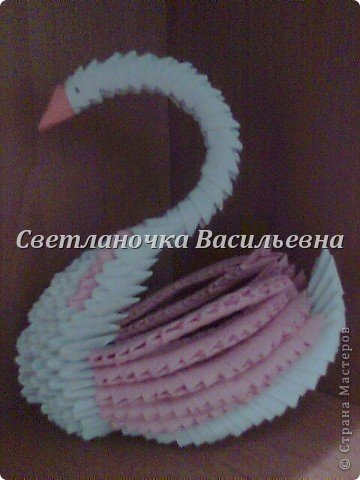 Лебеди фото 8