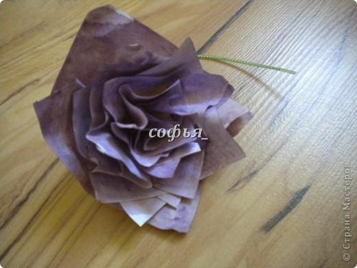 Нанизав такие лепестки, должен получится такой цветок. фото 6