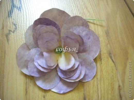 Нанизав такие лепестки, должен получится такой цветок. фото 1