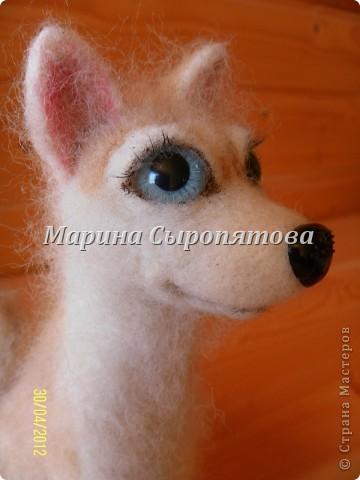 Лаечка Чарма родилась сегодня.рост 13,5см. Все мои работы можно увидетьздесь http//vk.com/club16187235 фото 1