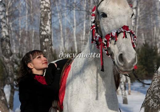 подарок лошадке фото 3