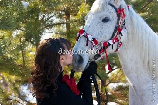 подарок лошадке фото 2