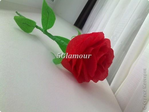 Роза из гофрированной бумаги фото 1