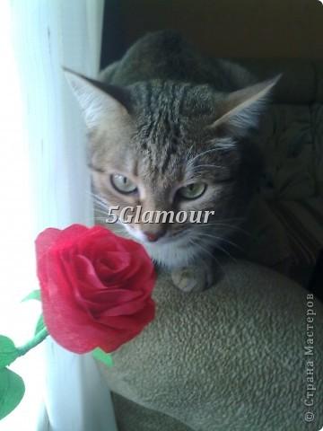 Роза из гофрированной бумаги фото 2