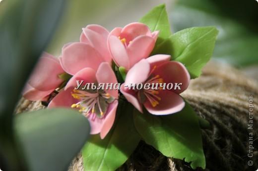 это зажим/брошь, то ли сакура, то ли розовая яблоня... в общем сама не поняла)))) фото 1