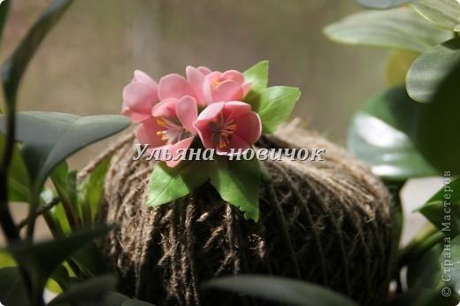 это зажим/брошь, то ли сакура, то ли розовая яблоня... в общем сама не поняла)))) фото 2