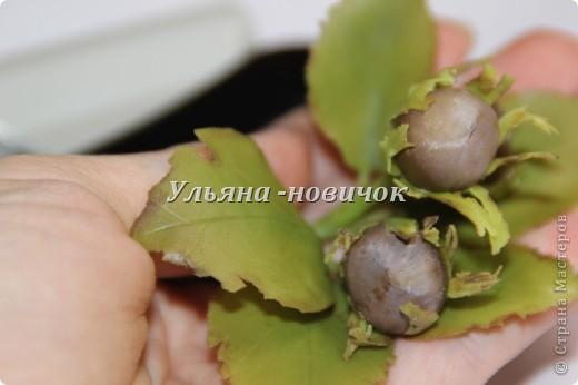 наконец-то  и я сделала 3 орешка - классика для всех, как мне кажется, кто занимается лепкой, как и слепить розу))) Лепила по видео-ролику на сайте http://www.fleur-group.ru фото 4