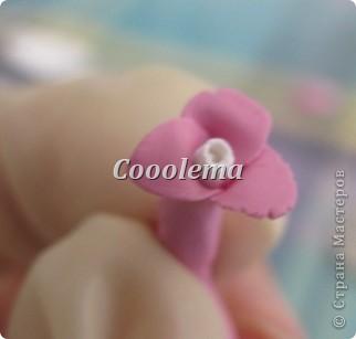 Привет! Научу вас лепить такие цветочки, ничего сложного, но, может, кому пригодится... Интереснее смотрится однотонный, но для МК я брала пластику двух цветов, чтоб нагляднее фото 12
