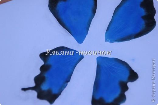 Ну девочки, как и просили, выкладываю МК, как я делаю бабочек))) Я в стране с этой идеей не первенец, первую бабочку я увидела из соленого теста  у Решетниковой Екатерины ( http://stranamasterov.ru/node/168707) (  и чудесную брошку от Марины V (http://stranamasterov.ru/node/351587?c=favorite). Вот, выкладываю вам свою версию))) И так, приступим))) фото 7