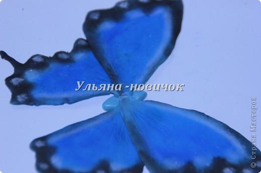 Ну девочки, как и просили, выкладываю МК, как я делаю бабочек))) Я в стране с этой идеей не первенец, первую бабочку я увидела из соленого теста  у Решетниковой Екатерины ( http://stranamasterov.ru/node/168707) (  и чудесную брошку от Марины V (http://stranamasterov.ru/node/351587?c=favorite). Вот, выкладываю вам свою версию))) И так, приступим))) фото 10