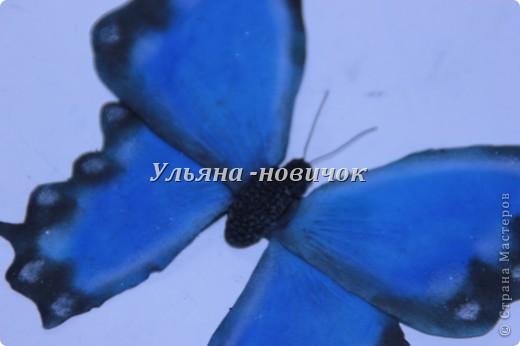 Ну девочки, как и просили, выкладываю МК, как я делаю бабочек))) Я в стране с этой идеей не первенец, первую бабочку я увидела из соленого теста  у Решетниковой Екатерины ( http://stranamasterov.ru/node/168707) (  и чудесную брошку от Марины V (http://stranamasterov.ru/node/351587?c=favorite). Вот, выкладываю вам свою версию))) И так, приступим))) фото 12