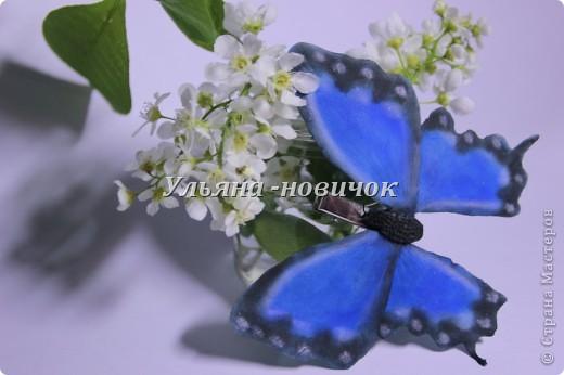 не кидайтесь тапками, я опять с бабочками это вчерашняя)) по которой МК вчера выкладывала фото 2