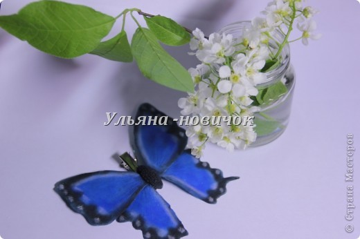 не кидайтесь тапками, я опять с бабочками это вчерашняя)) по которой МК вчера выкладывала фото 3