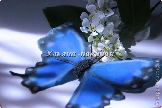не кидайтесь тапками, я опять с бабочками это вчерашняя)) по которой МК вчера выкладывала фото 4