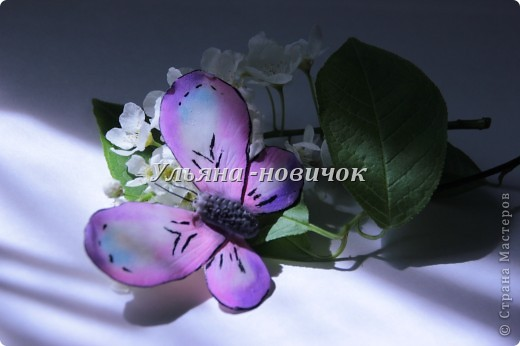 не кидайтесь тапками, я опять с бабочками это вчерашняя)) по которой МК вчера выкладывала фото 9