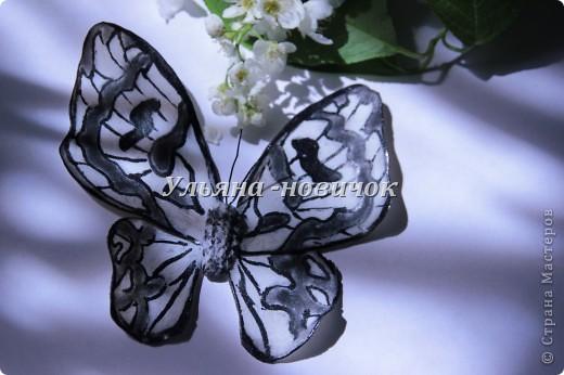 не кидайтесь тапками, я опять с бабочками это вчерашняя)) по которой МК вчера выкладывала фото 6