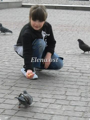 Мы с Вероникой очень любим кормить голубей. Берем с собой горох, семечки, различные крупы и в путь к нашим пернатым питомцам. фото 5