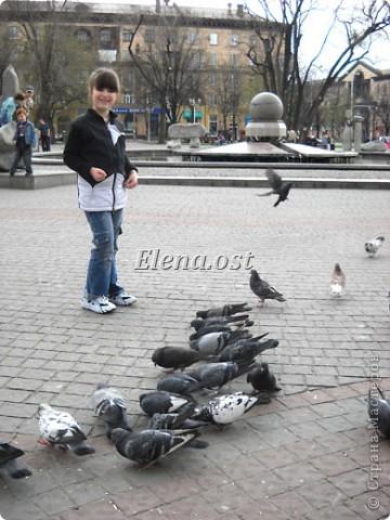 Мы с Вероникой очень любим кормить голубей. Берем с собой горох, семечки, различные крупы и в путь к нашим пернатым питомцам. фото 1