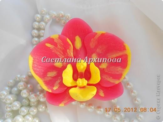 Орхидейка фото 2