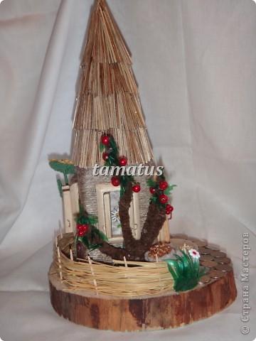 Домик из бутылки, обмотанной шпагатом. Крыша выложена соломой. Дверь, окна и порог сделаны мужем из дерева. Этот домик предназначается друзьям в подарок. фото 4
