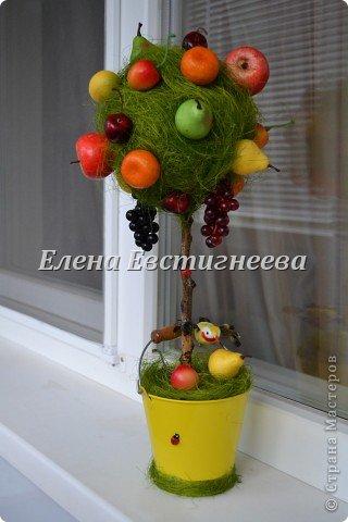 Урожай 2012 ))))) фото 1
