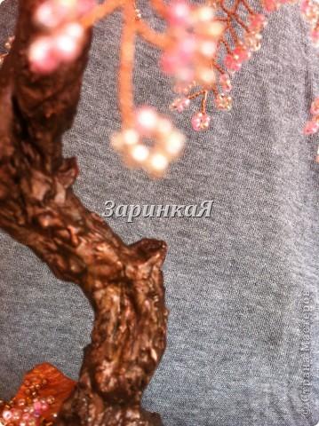 Очередная сакура) фото 2