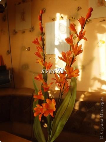 Мои цветочки( работы за последнее время) фото 2
