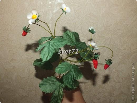 Мои цветочки( работы за последнее время) фото 6