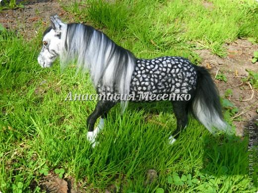 Авторская художественная работа в технике сухого валяния, лошадь(4-я работа на заказ) фото 2
